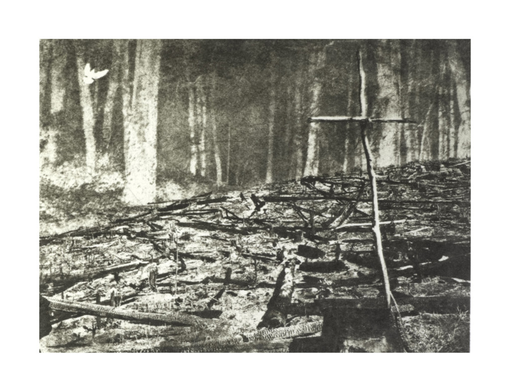 """Delville Wood"" - Intaglio Type"